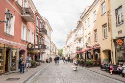 Vilnius - danke David