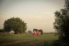 Da steht ein Pferd aufm Camping