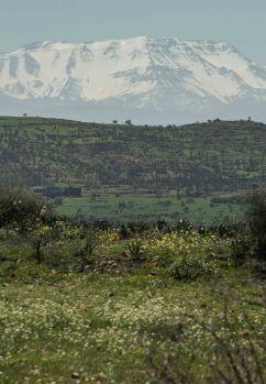 Marokko-März-106